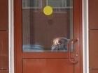 Уникальное изображение  Дверь алюминиевая теплая 900х2100 с импостом 37158427 в Санкт-Петербурге