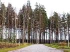 Скачать бесплатно фотографию  Участок 10 соток на берегу Суходольского озера 68323971 в Санкт-Петербурге