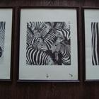 Картина Зебра 3 штуки для интерьера дома и дачи
