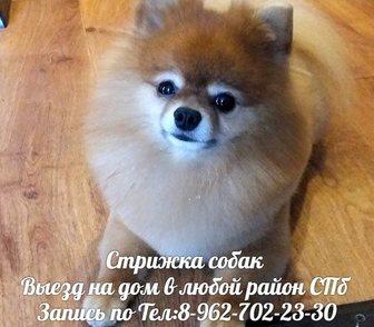 ����������� � ������ � ����� ������� ����� ������� �����   � ��������� ������� ������ � �����-���������� 1�200
