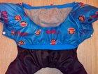 Фото в Собаки и щенки Одежда для собак Продам комбинезон для собачки. Размер L в Саратове 500