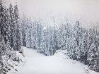 Фото в Отдых, путешествия, туризм Туры, путевки БАНСКО - популярный горнолыжный курорт Болгарии, в Саратове 25364