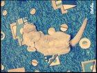 Фотография в   Прекрасная, красивая скромная кошка шатланской в Саратове 0