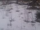 Изображение в Загородная недвижимость Загородные дома Продам дачу в пос. Жасминный: Строительный в Саратове 160000