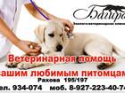Фото в Кошки и котята Вязка Ветеринарные услуги для Ваших питомцев:  в Саратове 0