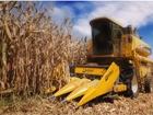 Скачать бесплатно foto Кормораздатчик Жатка для уборки кукурузы, 8 рядная ECH-8 39858676 в Сергиев Посаде