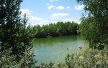 Дача, рядом лес, пруд для купания и рыбалки