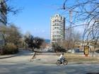 Фотография в Потерянные и Найденные Потерянные Потерялся в Севастополе 1 марта 2017 года в Севастополь 0