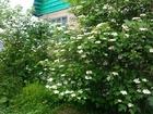 Скачать бесплатно изображение Продажа домов Продается замечательная уютная дача в СНТ «Зеленый бор» 37099251 в Северодвинске