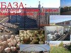 Уникальное foto  Помещение свободного назначения 2000 м2 + 1 га земли 32819749 в Славгороде
