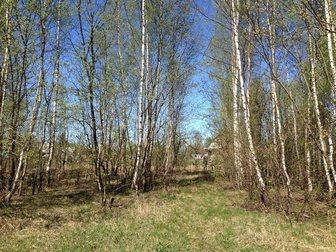 Просмотреть фотографию Земельные участки Земельный участок в Валтутино(уже черта Смоленска) 27 соток 32712579 в Смоленске