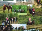 Увидеть изображение Товары для туризма и отдыха Конные прогулки Сочи, Экскурсии верхом на лошадях Сочи, Конный клуб Триумф Сочи 40069385 в Сочи
