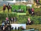 Уникальное фото Товары для туризма и отдыха Конные прогулки Сочи, Экскурсии верхом на лошадях Сочи, Конный клуб Триумф Сочи 40744233 в Сочи