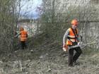 Расчистка земельных участков в Сочи