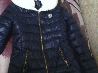 Скачать бесплатно фотографию  Продам куртку 34559755 в Сыктывкаре