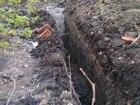 Свежее изображение  Разнообрачие/землекопы, 38386250 в Тольятти