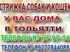 Просмотреть foto  Стрижка собак и животных у вас дома 40022540 в Тольятти