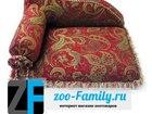 Фотография в   Интернет зоомагазин ZOO-Family. ru представляет: в Туле 4000