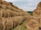 Фото в Домашние животные Корм для животных Продам сено в рулонах отличного качества, в Уфе 800