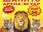 Увидеть изображение Цирк Билеты в цирк-шапито арена ягуар полосатый рейс 39999138 в Уфе