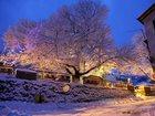 Скачать бесплатно foto  Рождественские туры в Грецию!Карнавал в Касторье `Рагуцарья`! 33767854 в Ульяновске