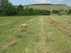Фотография в   свежевыкошенное душистое сено с экологически в Ульяновске 70