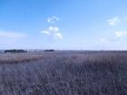 Увидеть изображение Земельные участки Участок земли за деревней Кувшиновка 69578701 в Ульяновске