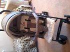 Новое фотографию Детские коляски Продам коляску 32818101 в Великие Луки