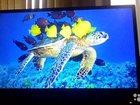 Свежее изображение  телевизор филипс 33323167 в Владикавказе