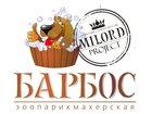 Увидеть фотографию Стрижка собак ЗООпарикмахерская БАРБОС 32431139 в Владимире