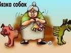 Фото в Домашние животные Зоомагазины ателье-магазин одежды для собак Алефтинка в Москве 25000