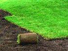 Изображение в   Возведение газонов любой сложности и видов: в Владимире 0