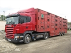 Новое фотографию  Услуги скотовозов 37722682 в Астрахани