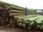 Смотреть фотографию Разное деревянные и железобетонные столбы ЛЭП 64748526 в Воронеже