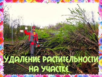 Новое изображение Другие строительные услуги Спиливание деревьев и корчевание пней 40378725 в Воронеже