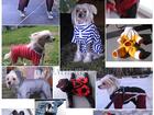 Увидеть фото  Пошив одежды собачкам 33726617 в Зеленограде