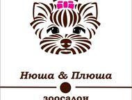 Стрижка собак и кошек, профессиональный груминг Новый зоосалон в Звенигороде.